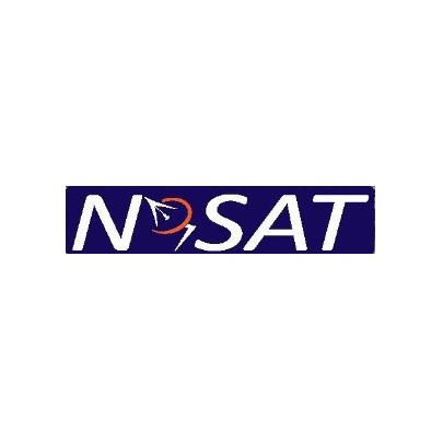 N-SAT